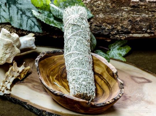 Shasta Salbei (Smudge stick, klein)